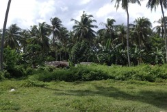 LOT FOR SALE IN PITALO SAN FERNANDO CEBU