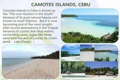 Lot For Sale in Camotes Island Cebu Lakeside Property