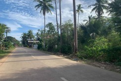 Commercial Lot For Sale in Daorong Panglao, Bohol