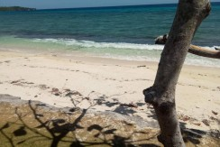 Beach Lot for Sale in Siquijor