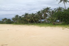 Beach Lot for Sale in Barangay of San Isidro, San Vicente Palawan