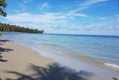 Beach Lot for Sale in Brgy Concepcion, Puerto Princesa City