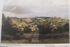 Lot for Sale in San Joaquin, Iloilo