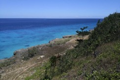 Lot for Sale in Kinatarcan island northern part of Cebu
