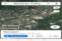 Lot for Sale in Bacayan Talamban
