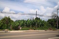 Commercial Lot for sale in Minglanilla, Cebu