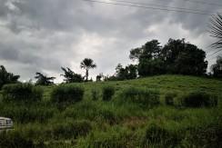 Farm Lot for Sale in Cambinocot Cebu City