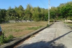 Greenwoods Executive Homes - Sta Luisa-OPMC - Pulangbato Talamban