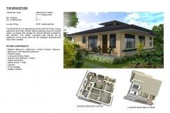Amonsagana - Synthic Property - Gaas, Balamban, Cebu