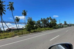 Commercial Lot for Sale in Compostela Cebu