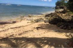 Beachlot for Sale in San Remegio Cebu