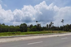 Lot for Sale in Dumanjud Cebu