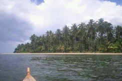 Beach Lot for Sale in Aporawan, Puerto Princesa City